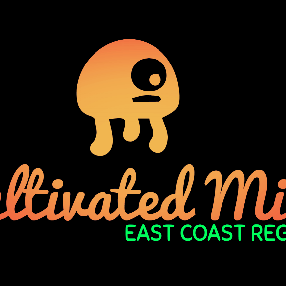 Live music with Cultivated Mind
