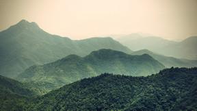 Τι είναι το ecotherapy;