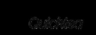 quiktea logo