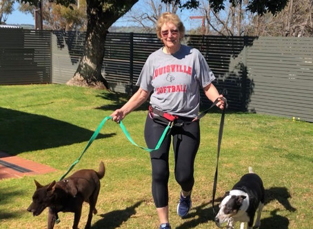 Walking, dogs, and protection for your shoulders:  Thoughts from a Specialist Shoulder Physiotherapi