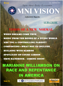 Omni Vision Issue #5 - Vision of a New Normal