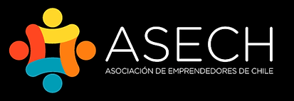 LOGO ASECH.png