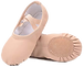 Toddler Ballet Shoes.png