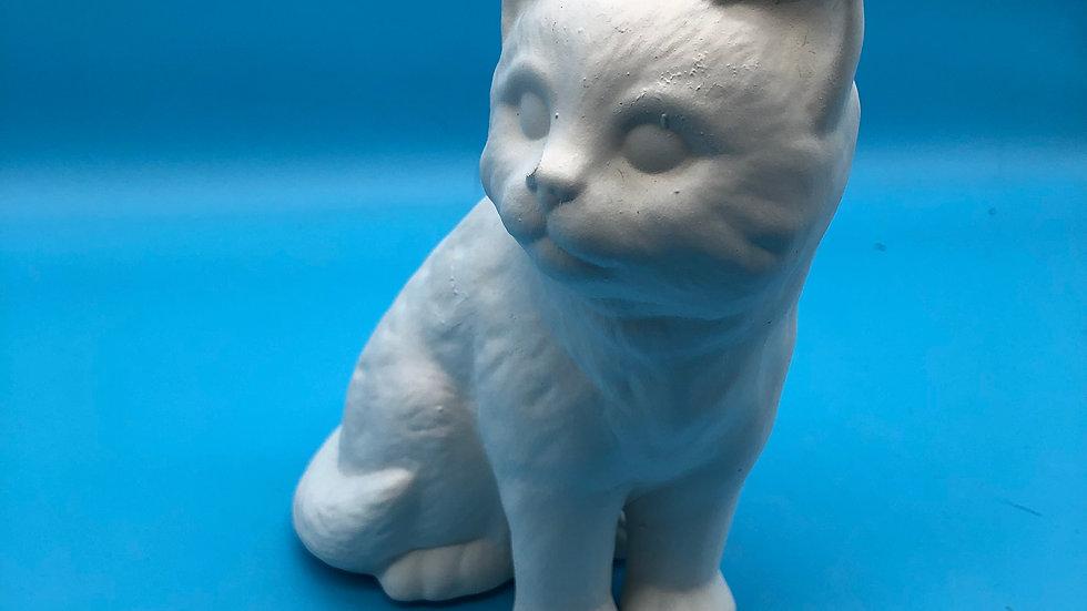Kitten - sitting large