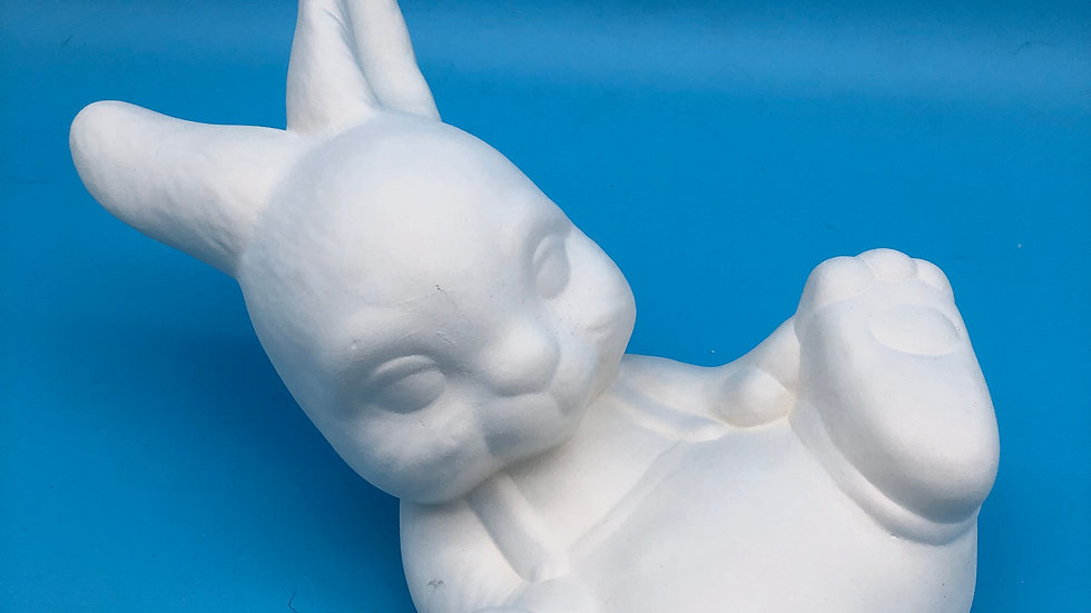 Boy Rabbit laying