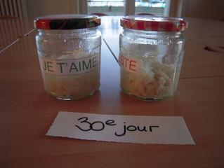 L'expérience du riz et de la carotte-Christine ( suite )