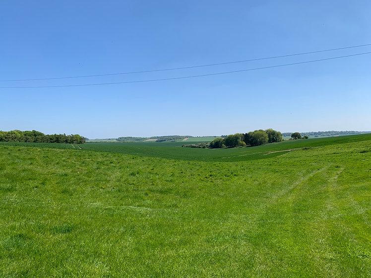 Letcombe Bowers Farm View.jpg