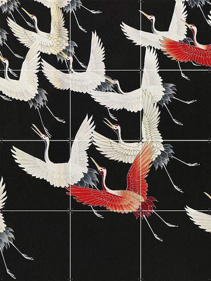 Kraanvogels _ 471 _ collage.jpg