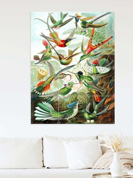 Hummingbirds 313 _ Interieur _ zoom kopiëren.jpg