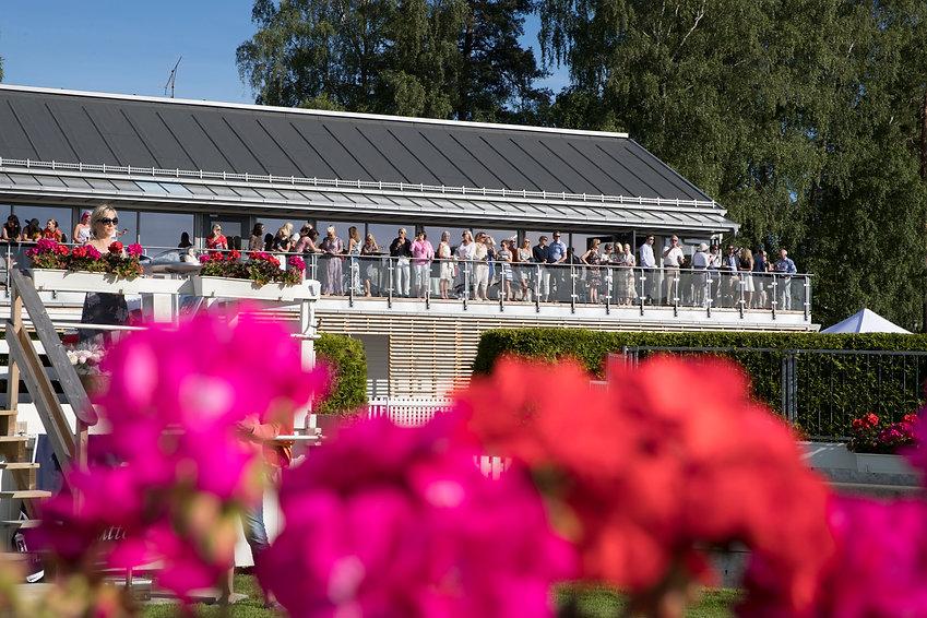 Øvrevoll Galopp Scandic Norsk Derby konkurranse