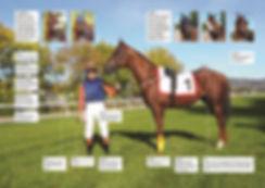 Øvrevoll, galopp, hest, norsk tipping, spill, betting, tips, gambling, Jockey, Tipping