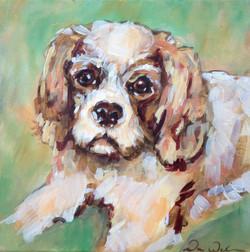 painting_littledog_spaniel2