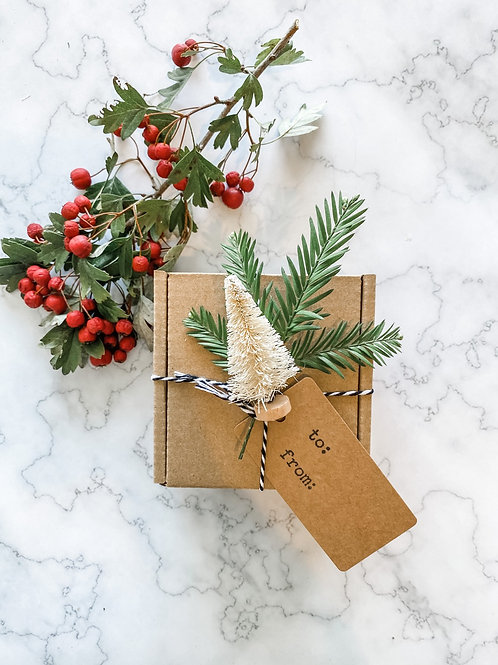 Gift Tags with Bottle Brush Trees | Set of 6