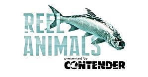 New-ReelAnimals-Logo.jpg