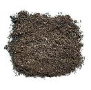 Compost_Top_Dressing_Sm_No_Ruler.png