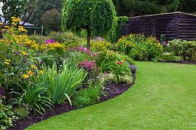 Green grass and beautiful garden