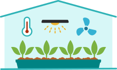 Organic produce in greenhouse