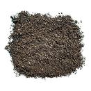 Compost_Top_Dressing_Lrg_No_Ruler.png
