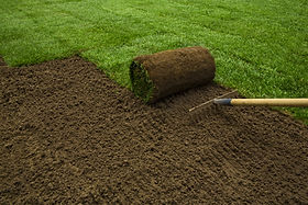 Seeding new lawn in compost