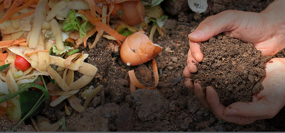 Hands in topsoil, food waste for composting