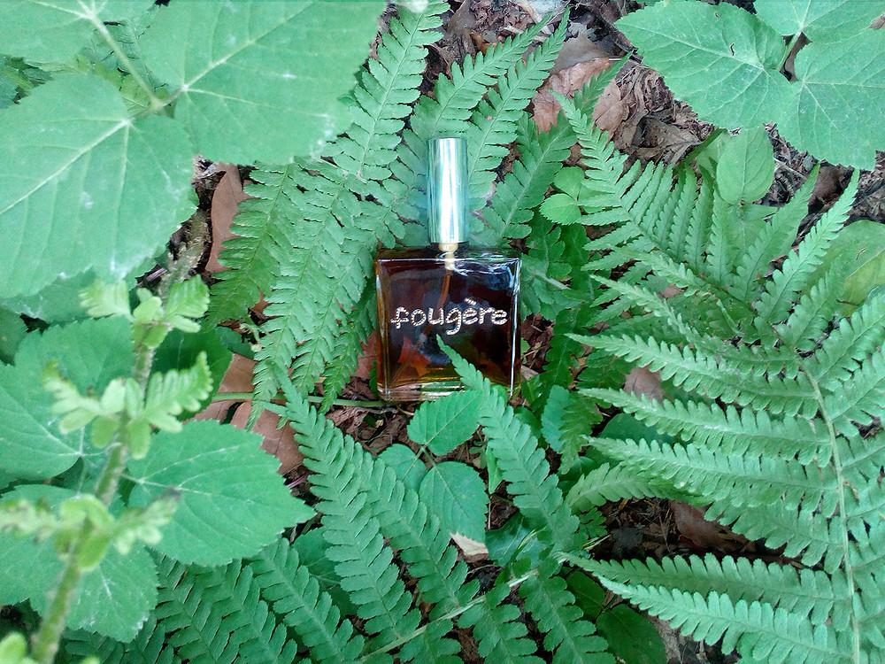 dans la famille des fougère je vous présente fougère, un parfum très végétal, avec des notes de lavande géranium et de mousse de chêne et un ingrédient secret !