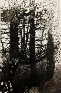Dissolving Tree Branches