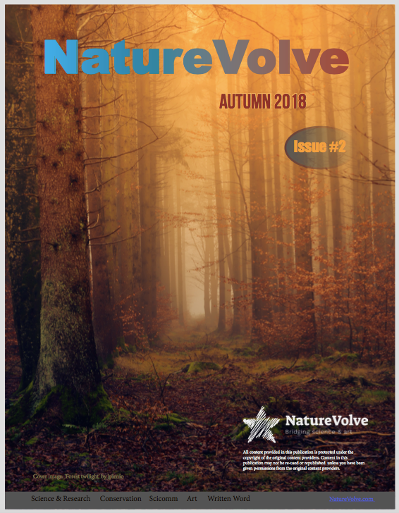 Issue 2 front cover NatureVolve