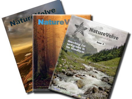 Open call for NatureVolve issue #9 announced: seeking scientists and creatives!