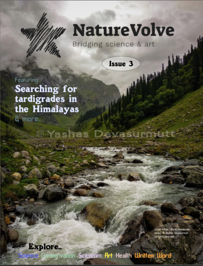 Issue 3 front cover of NatureVolve