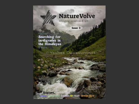 NatureVolve issue 3 is now released! Here's how to access it.