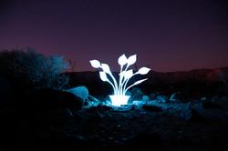 Light Sculpture in Death Valley