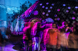The 'Fish' -  Nuit Blanche 2019