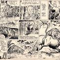 Le dessinateur glisse quelques anatomies animalières au cœur d'une intrigue pimentée d'humour.