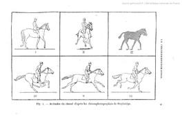 """Extrait de """"La Chronophotographie"""", E.-J. Marey, 1884"""