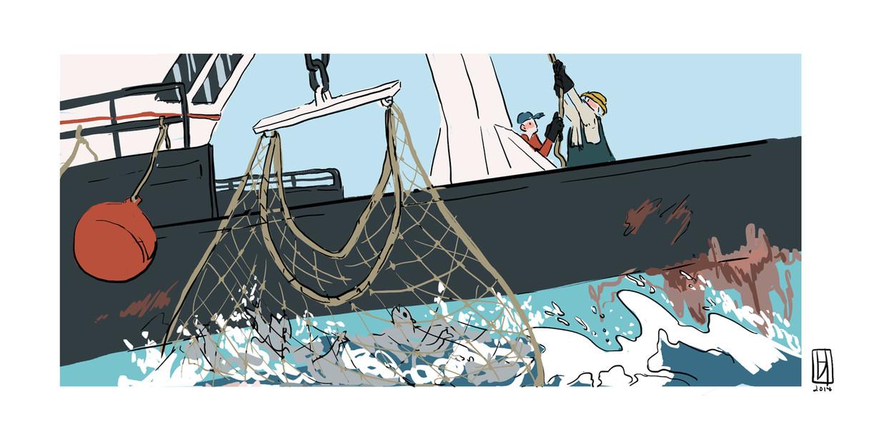 fisherman-color-storytelling-pull.jpg