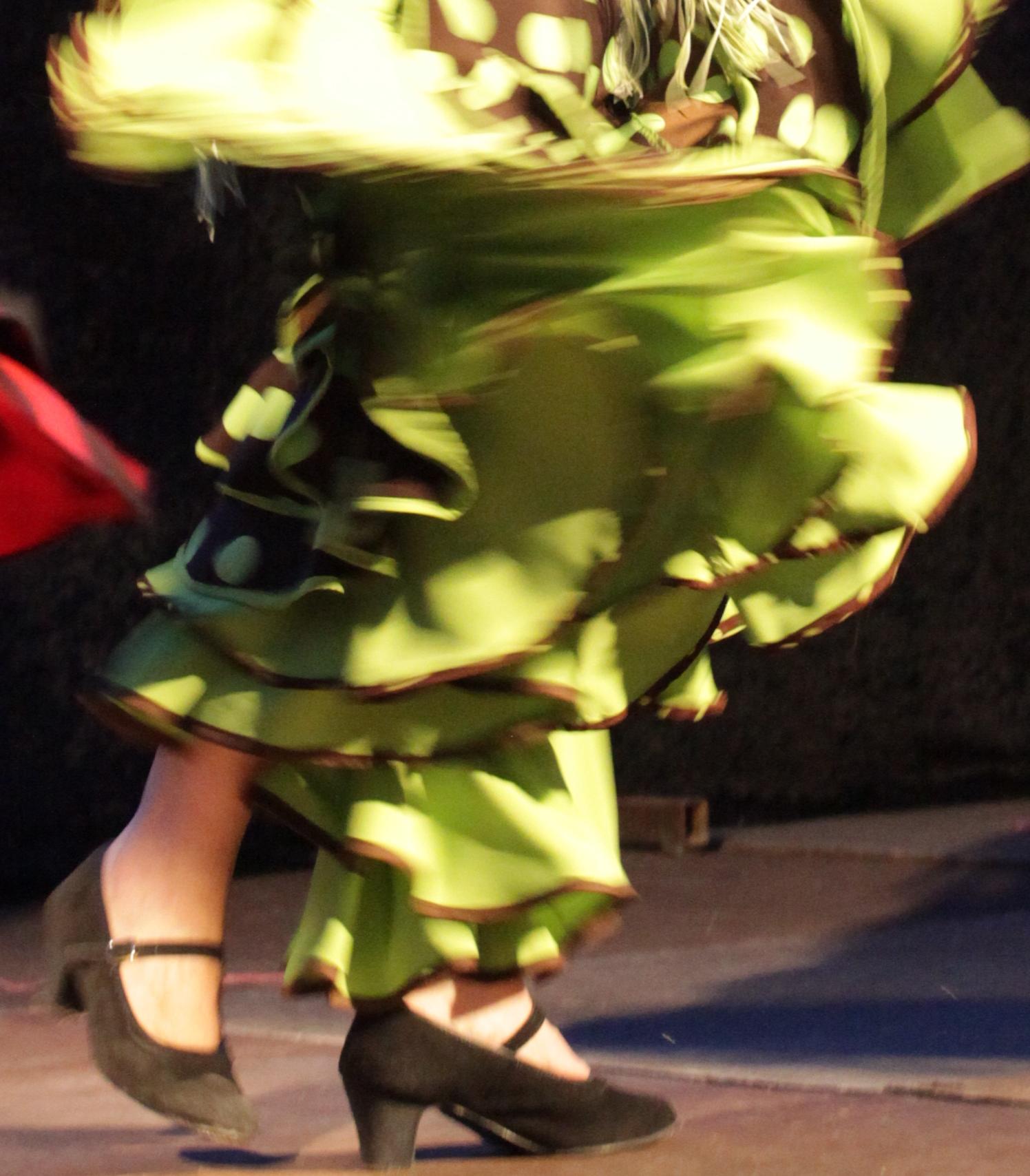 flamenco 2014 1262 (3)