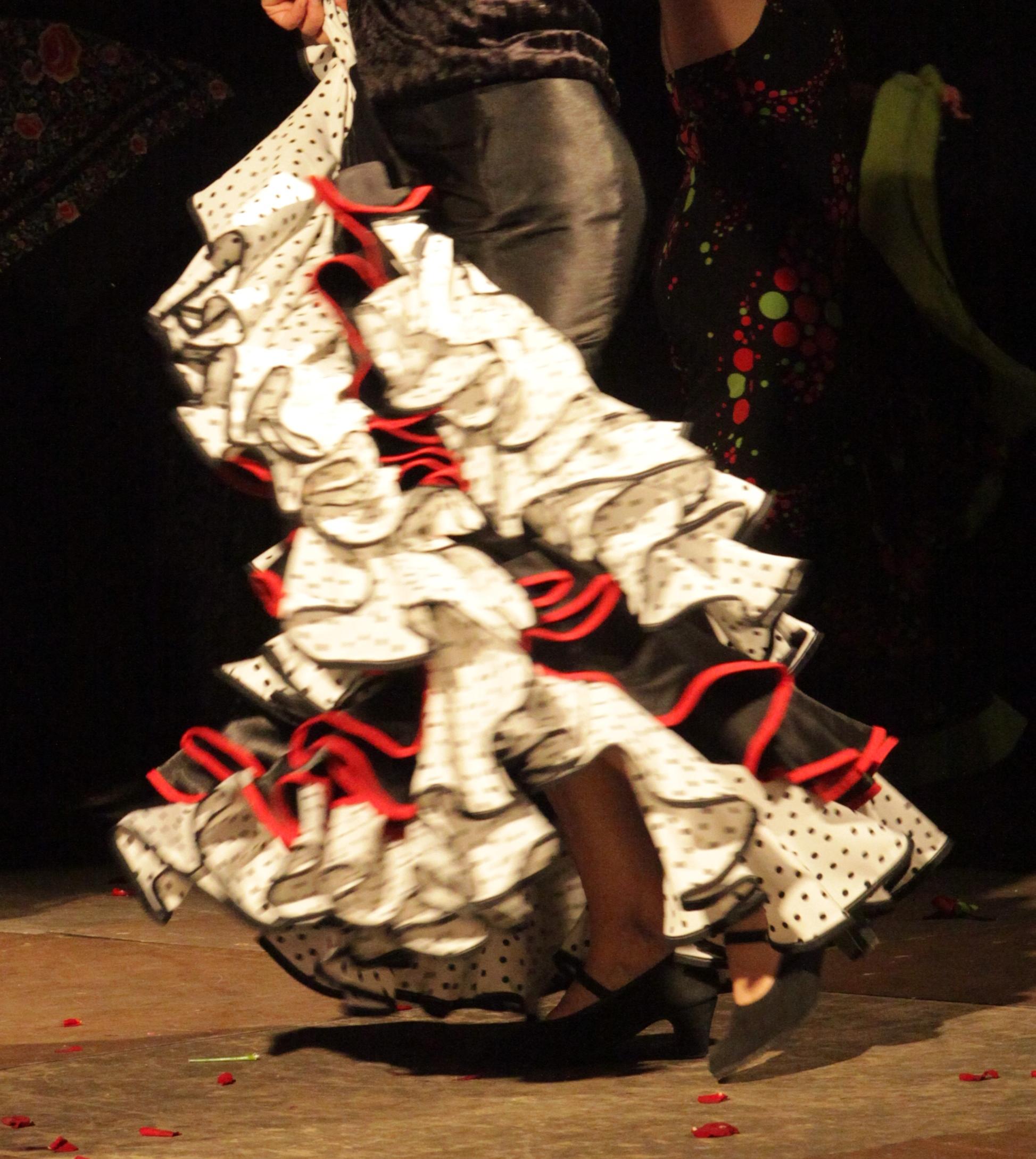 flamenco 2014 1613