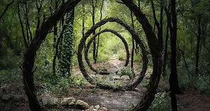 forest-spiral.jpg