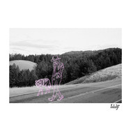 EVVAN - Wolf Cover Art