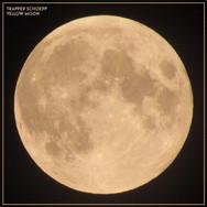 Trapper Schoepp - Yellow Moon - single art