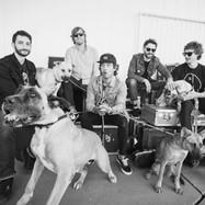 Sam Roberts Band - by Dustin Rabin 01