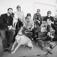 Sam Roberts Band - by Dustin Rabin 02
