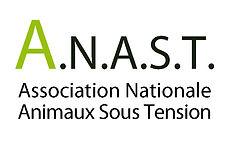 Logo ANAST.jpg