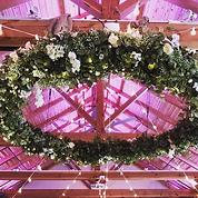 white_floral_hoop.png