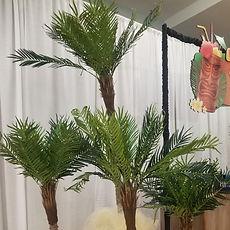 Palmtreeweb.jpg
