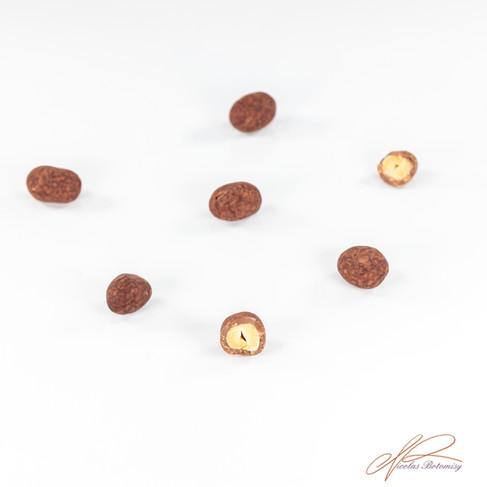 peanuts coating cocoa powder finish.jpg