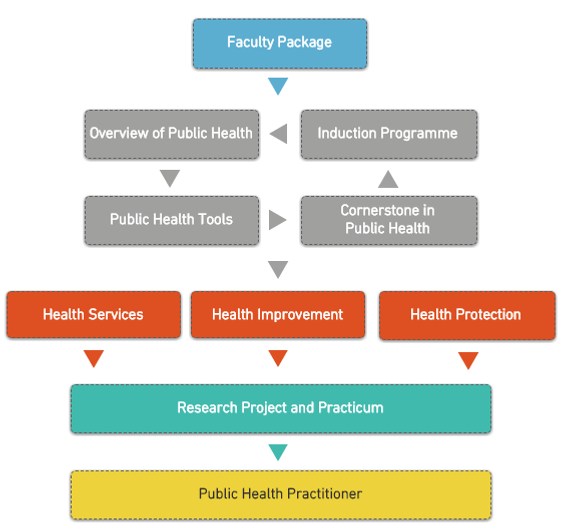 BSc in Public Health Process Model