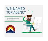 WSI-Web-Award-1.jpg