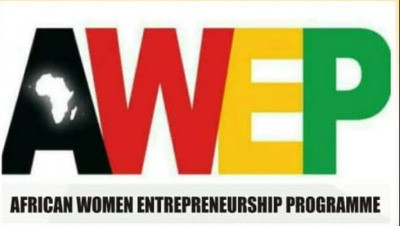 African Women Entrepreneurship Program