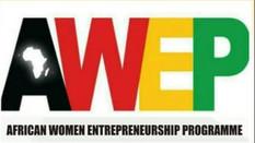 African Women Entrepreneurship Program